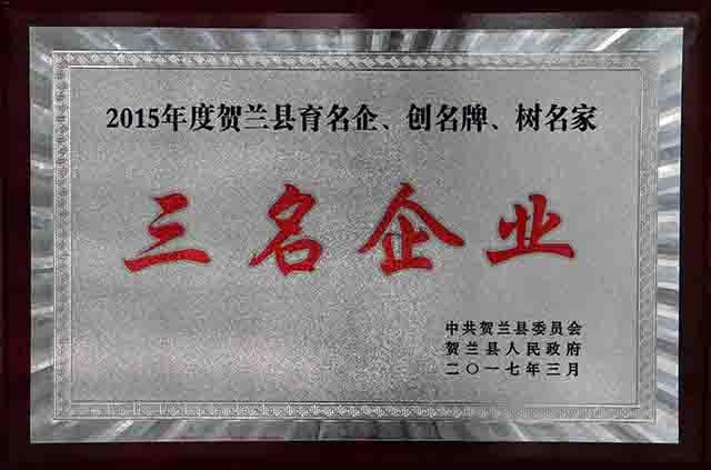 """荣获""""20115年度贺兰县育名企、创名牌、树名家""""三名企业"""